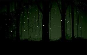 firefly light